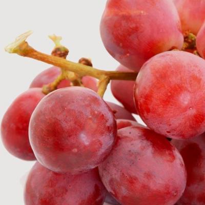 Tерапия за тяло с червено грозде